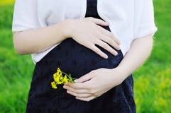 Vientre embarazado Imagenes de archivo