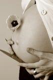 Vientre embarazado Foto de archivo