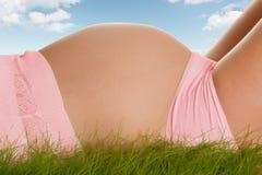 Vientre embarazado en hierba Foto de archivo libre de regalías