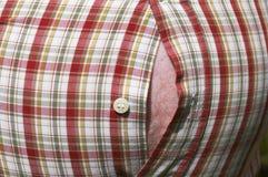 Vientre y rayas gordos Foto de archivo libre de regalías