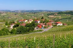 Vienyards och liten by i Italien Arkivfoton