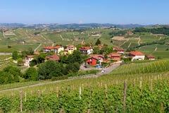 Vienyards y pequeño pueblo en Italia Fotos de archivo