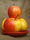 Vier Äpfel auf dem braunen Hintergrund Stockfotografie