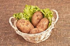 Vier aardappels in mand Royalty-vrije Stock Fotografie