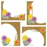 Vier achtergronden van het gerbermadeliefje Stock Afbeeldingen
