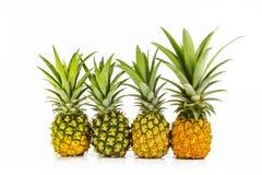 Vier ananas dichte omhooggaand Royalty-vrije Stock Foto