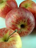 Vier appelen stock afbeeldingen