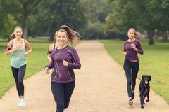 Vier Atletische Meisjes stoten bij het Park aan royalty-vrije stock afbeeldingen