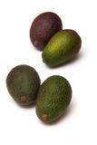 Vier Avocadobirnen Stockbild
