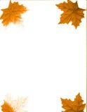Vier bladeren royalty-vrije illustratie