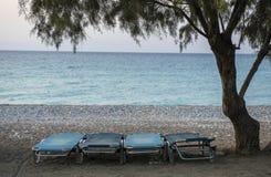 Vier blaue Strandstühle auf einem Strand unter einem Baum Stockfotografie
