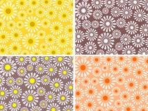Vier bloemenachtergronden Stock Foto's