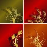 Vier bloemenachtergronden stock illustratie