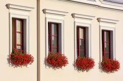 Vier bloemrijke vensters in een rij Stock Foto