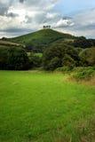 Vier bomen op een heuvel 2 royalty-vrije stock fotografie