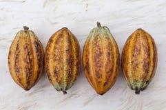 Vier cacao stock fotografie