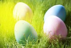 Vier dekorative Ostereier auf Sunny Green Grass Lizenzfreies Stockfoto