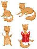 Vier die katten op witte achtergrond worden geïsoleerd Royalty-vrije Stock Afbeelding