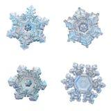 Vier die sneeuwvlokken op witte achtergrond worden geïsoleerd Royalty-vrije Stock Foto