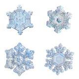 Vier die sneeuwvlokken op witte achtergrond worden geïsoleerd Royalty-vrije Stock Afbeeldingen