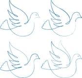 Vier duiven Stock Afbeelding