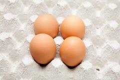 Vier Ei-Huhn auf Platte Stockfoto