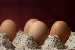 Vier Eier in einer Eierablage Stockfotografie