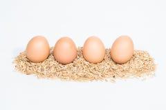 Vier Eier mit Hülsen Lizenzfreie Stockfotos