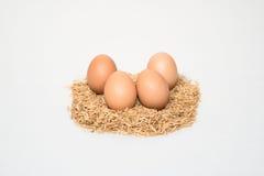 Vier Eier mit Hülsen Lizenzfreies Stockfoto