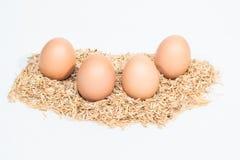 Vier Eier mit Hülsen Stockbild