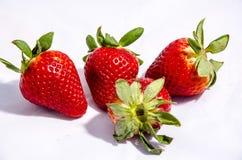 Vier Erdbeere-` s essfertig Lizenzfreie Stockbilder