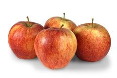 Vier frische Äpfel Stockbilder