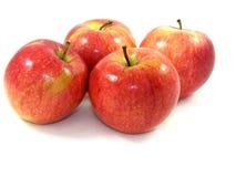 Vier, frische, glänzende Äpfel Stockbilder