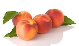 Vier frische Pfirsiche mit Blättern Stockfotos