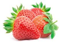Vier geïsoleerde aardbeien Stock Afbeeldingen