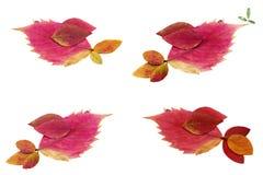 Vier geïsoleerde leuke met de hand gemaakte vogels Stock Afbeeldingen
