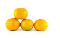 Vier Geïsoleerdez Sinaasappelen Royalty-vrije Stock Foto's