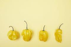 Vier gele groene paprika's op een rij Royalty-vrije Stock Foto