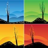Vier geplaatste seizoenen. Royalty-vrije Stock Foto's