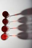Vier Glazen van de Rode Wijn Stock Fotografie