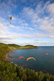 Vier Gleitschirme, die über die Küste fliegen Stockbild