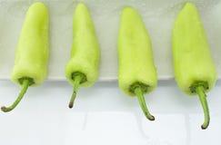 Vier grüne Pfeffer im Aufbau auf weißer Platte Stockfoto