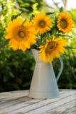 Vier große Sonnenblumen in einem hellblauen Emailkrug Stockfotos