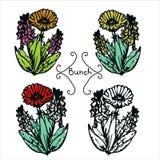 Vier hand-drawn bloembossen Royalty-vrije Stock Foto