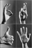 Vier handen het gesturing (b&w) Royalty-vrije Stock Foto