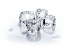 Vier ijsblokjes Royalty-vrije Stock Fotografie