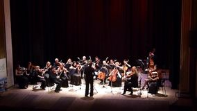 Vier Jahreszeiten Kammerorchester stock video footage