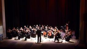 Vier Jahreszeiten Kammerorchester stock video