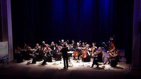 Vier Jahreszeiten Kammerorchester stock footage