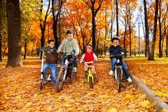Vier jonge geitjes in de fietsen Stock Afbeelding